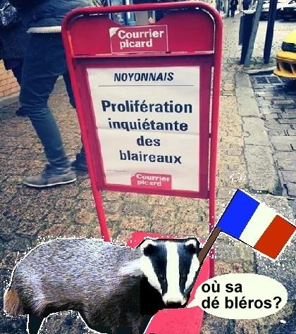 bbrblair+