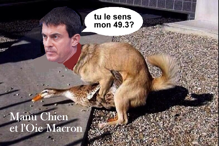 macron+